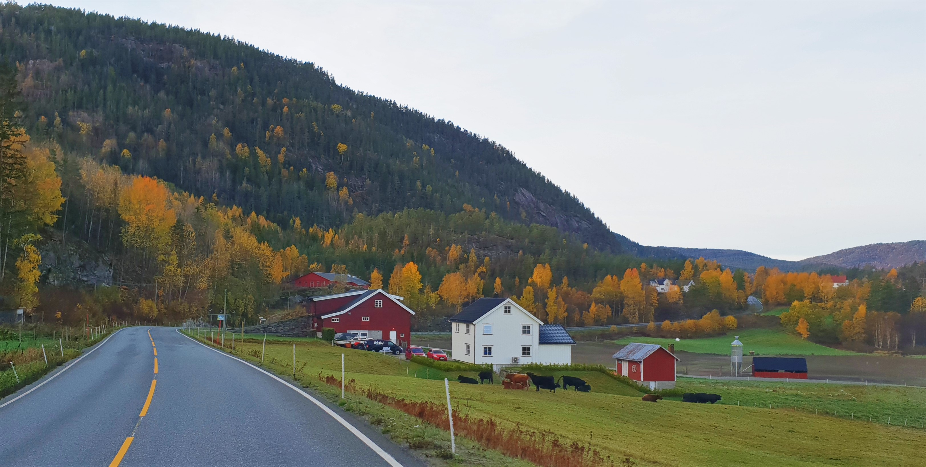 Utsikt fra bobil i Telemark
