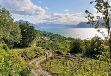 Lothe Camping i Hardanger