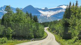 Reisebrev dag 11 – Buksnesfjord – Straumen