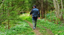 Reisebrev dag 2: Dalen – Vrådal i Telemark
